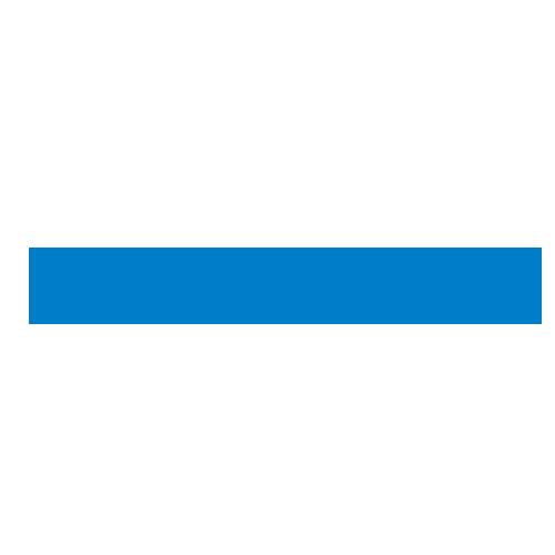 randstad logo 300