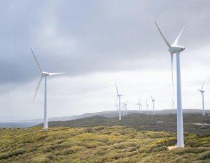 energias renovables ayudas